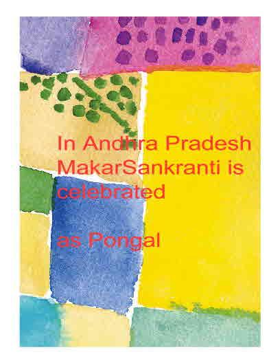 Pongal in AndhraPradesh