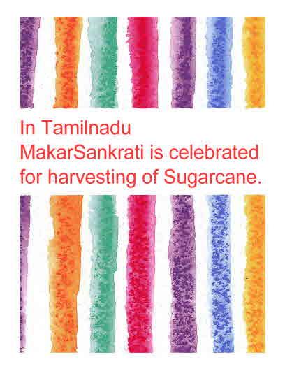 Sankranti in Tamilnadu
