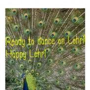 READY TO DANCE ON LOHRI